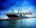 cargo de la importación al froom Shangai de Manzanillo
