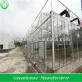 venlo invernadero de cristal para sistema de cultivo hidropónico