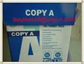 Copia en papel A4 de papel A4 papel 80 gsm fabricante