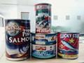 sardina en lata en salsa de tomate Sardinops sargax en salsa de tomate