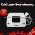 El nuevo 2013 de máquina de láser lipo diodo portátil para adelgazar
