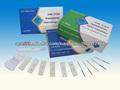 rapid FSH Menopause home test