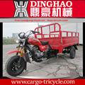 Motorizado motocicleta adultos tres ruedas triciclo de carga