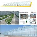 Invernaderos de Corea del Sur