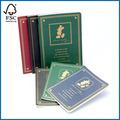 diseño de dibujos animados lindo gobernado libro diario