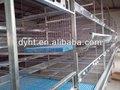 china la fábrica de suministro el último precio automático de la granja de pollos