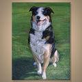 100% perro hecho a mano retrato lienzo de pintura al óleo