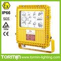 a prueba de explosión de la lámpara,IP66