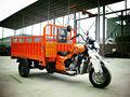 3 roda moto triciclo de carga para adluts