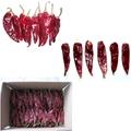 2014 chile rojo seco importador