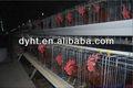 los nombres para los pollos