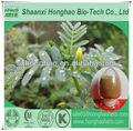 orgánicos certificados de tribulus terrestris extracto de fruta