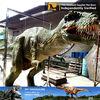 /p-detail/Mi-dino-100-hechos-a-mano-realista-traje-de-dinosaurio-para-la-venta-300003901394.html