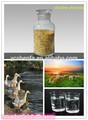 Cloruro de colina 50% de sílice, cloruro de colina en fabricantes de grado de la alimentación vitaminas