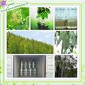 Farwell óleo de eucalipto