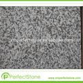 pulido de granito y piedra tapas de la vanidad del granito del azulejo g603 contador