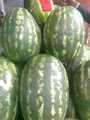 melón de agua dulce