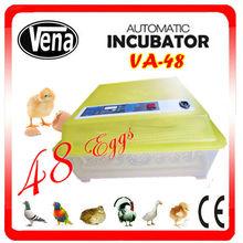 Célèbre incubateur numérique thermomètre oeufs d'à vendre la peau de porc cru à couver