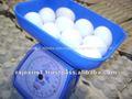 Precio de los huevos blancos