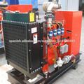 10kva - 50kva Generador biogas portátil
