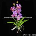 orquídeas artificiales en macetas