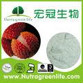 Kosher 100% puro chineses litchi frutas en polvo