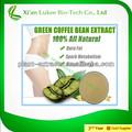Súper adelgaza producto puro grano de café verde extracto con ácido clorogénico 50%