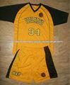 Personalizado del equipo de fútbol uniformes/de la liga de fútbol uniformes para los jugadores profesionales/