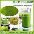 Thé vert matcha en poudre, poudre de thé matcha, japonais matcha