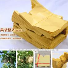 pera de protección bolsa de papel con diferente tamaño y precio barato