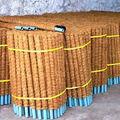 coco planta pole