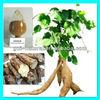 /p-detail/100-puro-a-base-de-hierbas-blanca-kwao-krua-40-2-300003012136.html