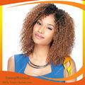 nuevos productos de dos tonos 1b 27 brasileño virgen llenas del cordón peluca afro rizo rizado pelucas del pelo humano