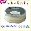 Barato Mini huevo incubadora incubadoras chinas para la venta dfi002