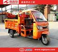 motor del triciclo/Cargando triciclo motorizado con Cargo refrigeración por aire HL200ZH-C01