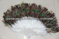 penachos de plumas de pavo real pluma ventilador de la mano para la venta