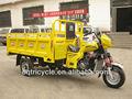 200cc de água de refrigeração do motor do triciclo/auto rickshaw para venda