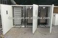 poulet oeufs à couver machine , incubateur industriel en france WQ-9856