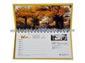 2013 la calidad de impresión del calendario personalizado de alta en China