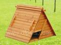 las aves de corral casa de construcción chino fabricación de casas de pollo dfc024 casas
