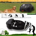 collar electrónico para perros