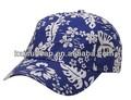 Las gorras de béisbol con impresión con su propio logotipo
