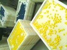Professtional Internacional línea de producción de la máquina de encapsulación de paintball de calidad