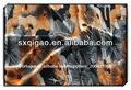 Maneira 4 tecidoelástico para vestido africano/impresso vestido tecidos