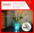 Nouveau design submersible LED pour vase
