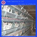prix concurrentiel batterie poules pondeuses cages
