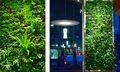 2014 especial diseño de la planta artificial de la pared con precio razonable y de buena calidad/caliente venta falsa planta de