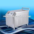220v portátil de alta pressão nointerior do carro& exterior lavar/jacto de vapor de lavagem do caminhão preço da máquina