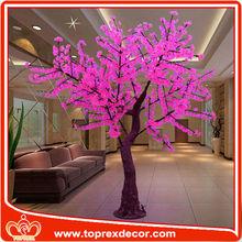 Paisaje llevó los cerezos en flor la luz del árbol