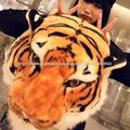 tigre ca